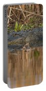 American Aligator Portable Battery Charger