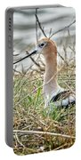 American Avocet Portable Battery Charger