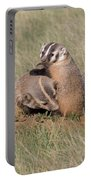 American Badger Cub Climbs On Its Mother Portable Battery Charger