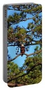 American Bald Eagle Portable Battery Charger