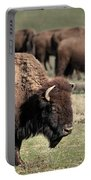 American Bison 5 Portable Battery Charger by James Sage