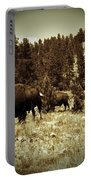 American Bison Vintage 2 Portable Battery Charger