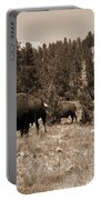 American Bison Vintage Portable Battery Charger