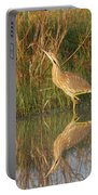 American Bittern Along The Shore Portable Battery Charger