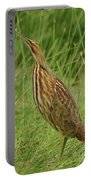 American Bittern Looking Up Portable Battery Charger