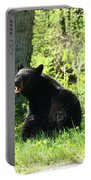 American Black Bear Portable Battery Charger