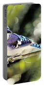 American Blue Jay On Alert Portable Battery Charger