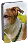 American Breed Brown Eyes Portable Battery Charger