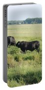 American Cattle Portable Battery Charger