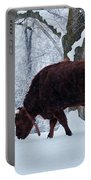 American Devon Grazes In The Snow Portable Battery Charger