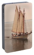 American Eagle Sail Portable Battery Charger