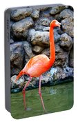 American Flamingo Portable Battery Charger