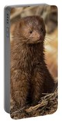 American Mink At Johnson Park Portable Battery Charger