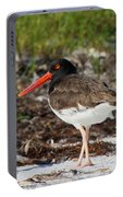 American Oyster Catcher Portable Battery Charger