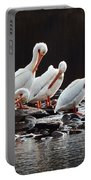 American Pelicans Portable Battery Charger