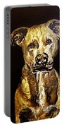 American Pitbull Portable Battery Charger