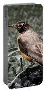American Red Robin Portable Battery Charger