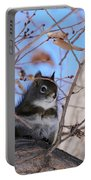 American Red Squirrel Portable Battery Charger