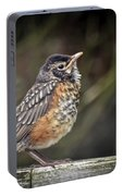 American Robin Fledgling Portable Battery Charger by Kerri Farley