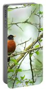 American Robin On Tree Branch Portable Battery Charger