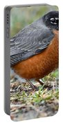 American Robin With Muddy Beak Portable Battery Charger