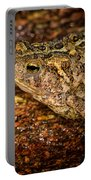 American Toad Portable Battery Charger