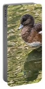 American Wigeon In Autumn Portable Battery Charger