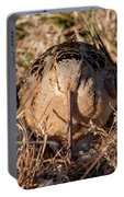 American Woodcock Head On Portable Battery Charger