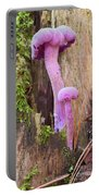 Amethyst Deceiver - Edible Mushroom Portable Battery Charger