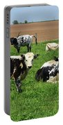 Amish Farm With Spotted Cows And Cattle In A Field Portable Battery Charger