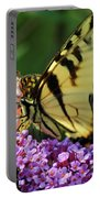Amorous Butterfly And Faerie Portable Battery Charger
