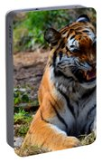 Amur Tiger 3 Portable Battery Charger