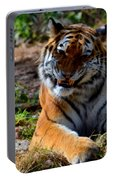 Amur Tiger 4 Portable Battery Charger
