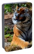 Amur Tiger 6 Portable Battery Charger