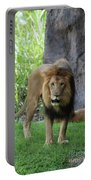 An Amazing Look At A Prowling Lion Standing In Grass Portable Battery Charger