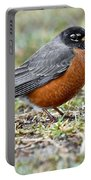 An American Robin With Muddy Beak Portable Battery Charger