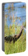 An Ibis In The Grass Portable Battery Charger