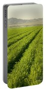 An Organic Carrot Field Portable Battery Charger