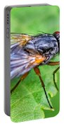 Anatomy Of A Pest Portable Battery Charger