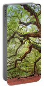 Ancient Angel Oak Tree  Portable Battery Charger