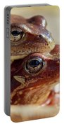 And Then I Found You. European Common Brown Frog Portable Battery Charger