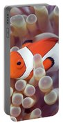 Anemone And Clown-fish Portable Battery Charger