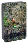 Anemone Reflection  Portable Battery Charger