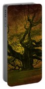 Angel Oak 3 Charleston Portable Battery Charger