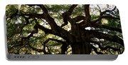 Angel Oak In November Portable Battery Charger