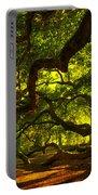 Angel Oak Limbs 2 Portable Battery Charger by Susanne Van Hulst