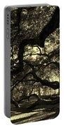 Angel Oak Limbs Sepia Portable Battery Charger