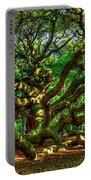 Angel Oak Morning Shadows Charleston South Carolina Portable Battery Charger