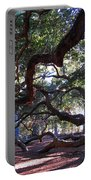 Angel Oak Side View Portable Battery Charger