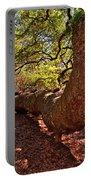 Angel Oak Tree 003 Portable Battery Charger